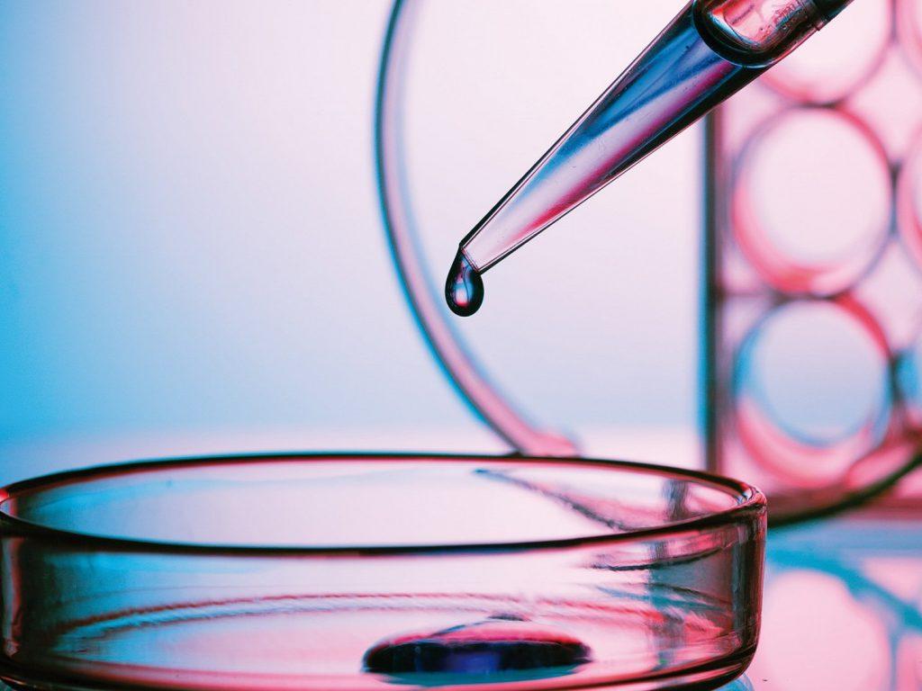 in vitro test